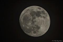 Mond 19.01.2019 19:37:32 Riehen (Urs Dietz) Tags: mond moon night vollmond fullmoon nacht picoftheday photography naturephotography luna lunareclipse lune moonlight amazing canon sky nikon beautiful canon80d himmel tamronsp150600f56