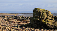 On the beach at low tide (Dave Russell (1 million views thanks)) Tags: kilmory isle island arran scotland west western beach coast coastal sea seascape scape view vista scene scenery outdoor canon eos eos7d 7d low water tide out rock rocks shore shoreline uk