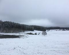 First snow at St Peter (Black Forest, Baden, Germany) (Loeffle) Tags: 102018 germany allemagne deutschland baden blackforest schwarzwald foretnoire stpeter schnee snow neige winter
