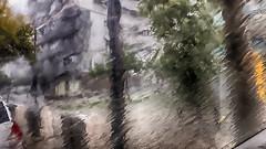Viendo diluviar desde el coche (candi...) Tags: lluvia coche ciudad agua ventana arboles samsung