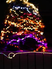 Christmas Tree Bokeh (wyojones) Tags: wyoming cody christmas christmasseason holidays lights tree yard street merrychristmas decorations snow bokeh focus fence wyojones mp np