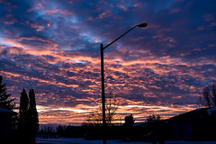 Falls pink highlighted clouds sunset. (darletts56) Tags: sky blue cloud clouds grey purple pink orange gold golden silhouette lamp pole post poles posts white black home homes house houses village sunset prairie saskatchewan canada tree trees road highway vehicle vehicles evening dusk lights light