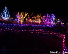 915A6324 (mikekos333) Tags: 2018 december christmas christmaslights coastalmainebotanicalgardens boothbay