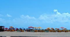 já vai começar (lucia yunes) Tags: praiadaboaviagem recife beleza praia mar verão summer beach seascape sea sol sun mobilephoto mobilephotographie motozplay luciayunes pernambuco