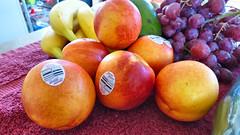 I've been shopping today (Sandy Austin) Tags: panasoniclumixdmcfz70 sandyaustin westauckland auckland fruit northisland newzealand bananas nectarines grapes