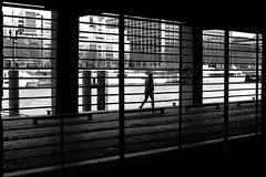 Behind the lines (pascalcolin1) Tags: paris13 femme woman seine quaisdeseine lines lignes lumière light ombre shadow photoderue streetview urbanarte noiretblanc blackandwhite photopascalcolin 50mm canon50mm canon