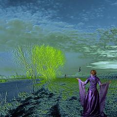 let go (old&timer) Tags: background infrared composite conceptual song4u oldtimer imagery digitalart laszlolocsei