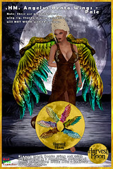 Harvest Moon - Angelus Bento Wing Set - Pale (honeyheart1) Tags: wing wings fairy fae eagle bird pagan neopagan witch magician roleplay sl secondlife harvestmoon