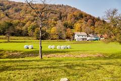 Selo Štefanci, pogled s Kupe (MountMan Photo) Tags: štefanci gorskikotar primorskogoranska croatia landscape bojejeseni autumncolors šuma forest flickrunitedaward
