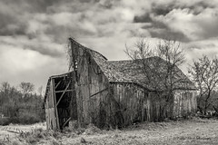 barn is barely holding on - E. Colonville Rd Clare Michigan (TAC.Photography) Tags: barn farm farmer derelict derelictbarn oldstructure deteriorating weatheredwood 2018yip puremichigan nikoncamera d7100 nikon tomclarknet tacphotography