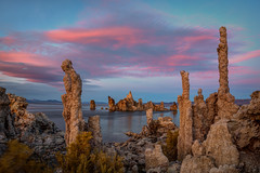 Sunset Towers (Jeff Sullivan (www.JeffSullivanPhotography.com)) Tags: mono lake eastern sierra fall colors aspen trees lee vining landscape nature travel photography bishop california usa canon 5d mark iv photo copyright 2018 jeff sullivan october sunset
