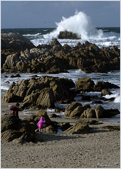 Watching the Waves (Carol Deuel) Tags: oceanviewblvd pacificgrove asilomar rocks waves pacificocean people children pinkjacket sonya6000digitalcamera mirrorlesscamera photography adobephotoshopcs6 nikcollection california monterey peninsula