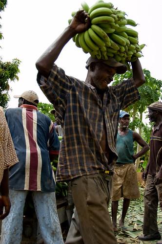 APROVAG - Tambacounda.jpg