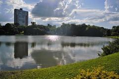 DSC_3749 (2) (Proflázaro) Tags: brasil goiás cidade jataí parqueecológicodiacuy lago lagodiacuy jardim canteiro brilho tranquilidade reflexo nuvem edifício edifícioresidencial cerrado árvoredocerrado paisagem paisagemurbana pedalinho viagem natureza ecologia nikond3100