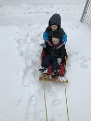 """Paul and Dani in Their Sled • <a style=""""font-size:0.8em;"""" href=""""http://www.flickr.com/photos/109120354@N07/33056589608/"""" target=""""_blank"""">View on Flickr</a>"""