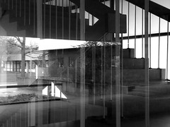 blurred worlds (pix-4-2-day) Tags: reflection reflexion window fenster treppenhaus stairwell stairs staircase treppe geländer baum tree blackandwhite black white schwarzweis monochrom monochrome stäbe