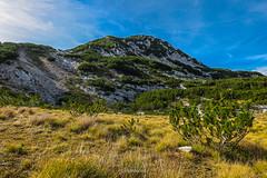 Čvrsnica mountain, Bosnia and Herzegovina (HimzoIsić) Tags: landscape mountain mountainside mountaineering hill outdoor nature grass sky