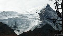 Aiguille du Goûter (3 863 m) (Quentin Douchet) Tags: aiguilledugoûter3863m alpes alpesfrançaises alps auvergnerhônealpes france frenchalps hautesavoie automne autumn landscape montagne mountain neige paysage snow sommet summit