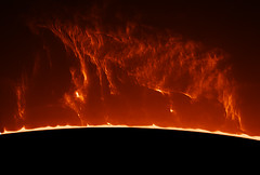 prominence (plndrw) Tags: sun solar ha hydrogenalpha hydrogen prominence lunt televue