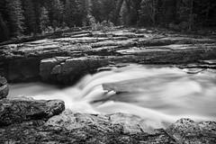 Layers of Rock (Thomas Pohlig) Tags: glacier glaciernationalpark water stream creek mcdonaldcreek rocks trees light monochrome mono blackandwhite blackandwhitephotography montana landscape