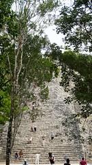2017-12-07_12-28-26_ILCE-6500_DSC03044 (Miguel Discart (Photos Vrac)) Tags: 2017 67mm archaeological archaeologicalsite archeologiquemaya coba e1670mmf4zaoss focallength67mm focallengthin35mmformat67mm holiday ilce6500 iso100 maya mexico mexique sony sonyilce6500 sonyilce6500e1670mmf4zaoss travel vacances voyage yucatecmayaarchaeologicalsite yucateque