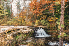 Little Falls (Mandy Lou Who) Tags: hocking hills ohio old mans cave cedar falls waterfall orange green autumn fall color landscape hiking family excursion