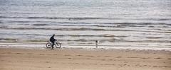 Cyclist and his dog (JLM62380) Tags: cyclist dog cycliste chien beach mer plage sea blue bleu man homme hardelot france sable sand ocean eau personnes océan vague hautsdefrance rivage