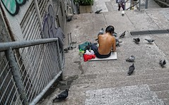 Bird Man, Ladder Street off Hollywood Road, Hong Kong (J3 Private Tours Hong Kong) Tags: hongkong