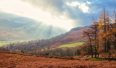 Autumn remnants (Rob McC) Tags: landscape lakedistrict thelakes mountains trees woods foliage autumn fall sunbeamssun rays clouds bracken valley
