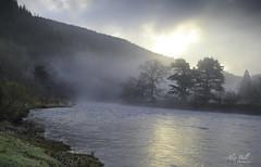 River Tweed (Alex365pix) Tags: scotland landscape leefilters mist trees rivers thetweed sunrise moody nikon benro