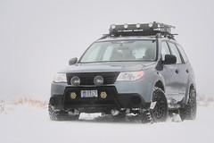2012 Subaru Forester (softroadingthewest.com) Tags: softroadingthewest sh forester subaru snow driving ko2 winter blackrhinoboxerwheels rallyinnovations hellablackmagic offroad