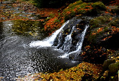 Waterfall In Autumn (gcobb84) Tags: nikon water pool ripples leaves autumn movement landscape