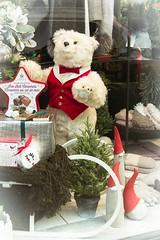 Window Shopping (Karen_Chappell) Tags: window shop store downtown holiday xmas noel christmas city urban bear teddybear stjohns newfoundland nfld canada atlanticcanada avalonpeninsula green red white christmastree shopping
