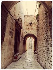 Sibénik la médiévale,un Saint nous regarde... (busylvie) Tags: rue street architecture pierres pavés stones ar arcades statue saint sepia emblème