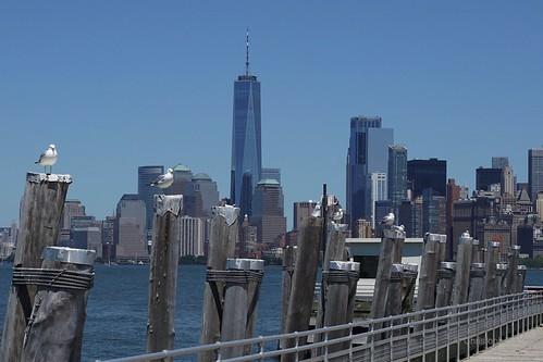 NYC Skyline - Liberty Island