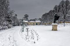 Neige sur le Parc de la Malmaison (Lucille-bs) Tags: europe france iledefrance hautsdeseine rueilmalmaison parc malmaison hiver neige statue arbre