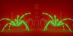 Spiders from Mars (Rollingstone1) Tags: spiders mars garden invasion insects vivid psychedelic colour fantasy neon art artwork arachnoids