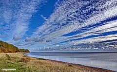 Küstenlandschaft (garzer06) Tags: ostsee wolken deutschland landschaftsbild vorpommernrügen landschaftsfoto strand sand naturephoto landscapephotography inselrügen naturfoto baum wolkenhimmel naturfotografie landschaftsfotografie küstenlandschaft