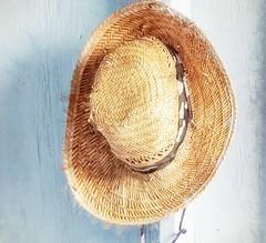 Straw Hat, Pyramid Family Farm, Captain Cook, Hawaii (augenbrauns) Tags: olympusomdem1ii coffeefarm hawaii captaincook pyramidfamilyfarm lightblue strawhat straw netartii