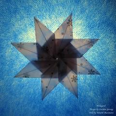 Hildegard (AnkaAlex) Tags: origami origamiart origamistar modulorigami modular modul star paperfolding paper paperfoldingart carmensprung bluestar