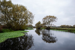 _DSC3017.jpg (Dave Simmonds) Tags: other canal tree river riversoar reflection boat water leicestershire loughborough england unitedkingdom gb