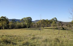 Lot 45 Sawyers Gully Road, Tenterfield NSW