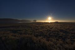 Neix el dia (Francesc //*//) Tags: alba amanecer dawn aube gallocanta gallocantalagoon lagunadegallocanta landscape paisatge paisaje natura naturaleza nature llacunagallocanta sunrise leverdusoleil sol soleil horitzó horizon horizonte