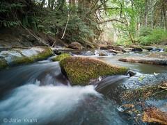 Mohawk River, Marcola, Oregon, USA (jarle.kvam) Tags: river marcole oregon blur huawei mohawkriver usa