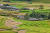 _J5K2195.0918.Lìm Mông.Cao Phạ.Mù Cang Chải.Yên Bái (hoanglongphoto) Tags: asia asian vietnam northvietnam northwestvietnam landscape scenery vietnamlandscape vietnamscenery vietnamscene terraces terracedfields seasonharvest harvest village house homes hdr canon canoneos1dsmarkiii canonef200mmf28liiusm tâybắc yênbái mùcangchải caophạ lìmmông thunglũnglìmmông ruộngbậcthang lúachín mùagặt nhữngngôinhà bảnlàng ruộngbậcthangmùcangchải mùcangchảimùalúachín mùcangchảimùagặt