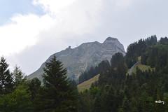 Moléson (Kevin Biétry) Tags: moléson moleson montagne mountain mount gruyère lagruyère d3200 d32 d32d nikond3200 nikon kevinbiétry kevin keke kequet kequetbibi fribspotters