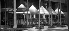 Stripes. Miami Downtown Series (Mariner's Photography) Tags: miami downtown architecture building terrace sunshade brickell blackandwhite bw