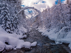 L'Arveyon River in Winter (Wolfhowl) Tags: france skiing landscape winter serene chamonixmontblanc mountains blue snowfall франція montblancmassif clouds montblanc mountain january stream calm rocks river forest snow travel шамоні relaxed larveyon europe chamonix ice