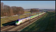 SNCF TMST 3213/3224 @ Rebecq (Steven De Haeck) Tags: izy thalys tmst transmanchesupertrain rebecq waalsbrabant brabantwallon belgië belgique lijn1 hsl lgv hst brussel bruxelles paris hogesnelheidstrein highspeedtrain