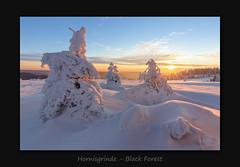Hornisgrinde (MC--80) Tags: hornisgrinde black forest